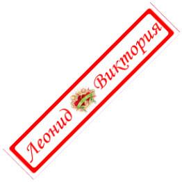 """Наклейки на номерной знак """"Леонид и Виктория"""" 2шт"""
